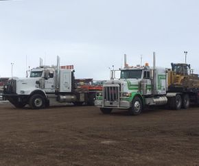 Mayne Transport fleet trucks